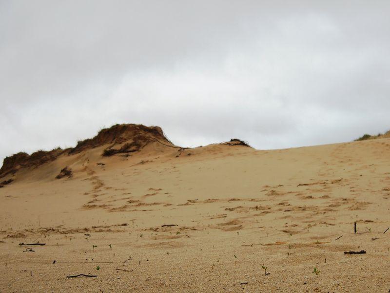Dunes_b